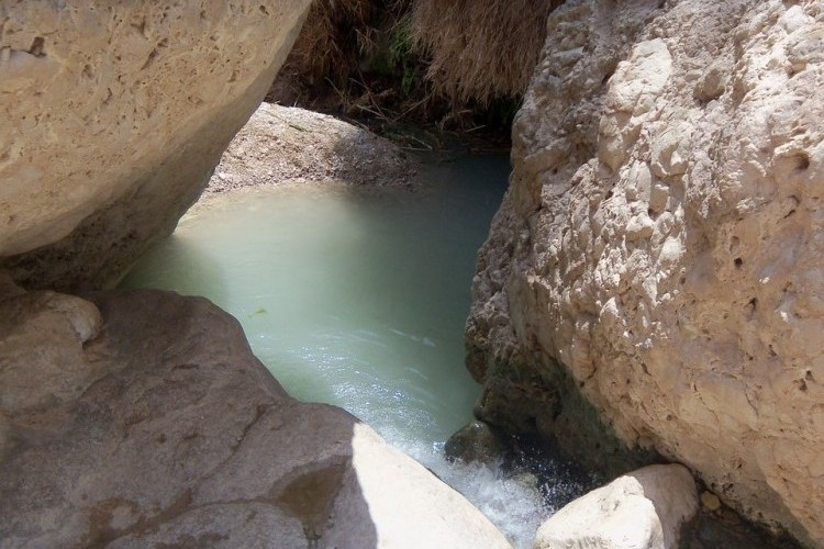 things to do in jerusalem_ein gedi nature reserve